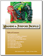 Meaning and Purpose Profile